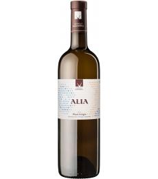 Pinot Grigio Alia Weingut Morandell Kaltern